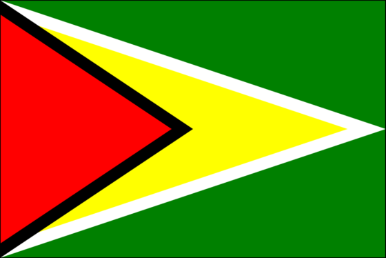 Flag of Guyana - Co-operative Republic of Guyana - All Flags ORG